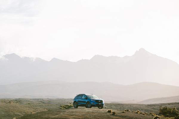 The Ford Endura
